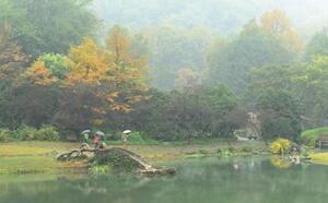 杭州:雨雾飘渺太子湾