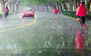 杭州的小伙伴注意啦!本周要下五天雨