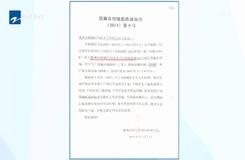 20190808《今日聚焦》:衢州柯城区——上叶村木材加工市场违规使用设施农用地
