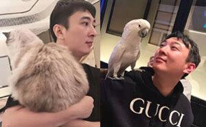 鸭?#21451;?#39548;鹦鹉…王思聪要开动物园?