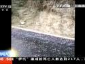 浙江:暴雨大风冰雹