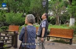 20200723《华人天地》:写不尽故乡情