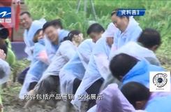 浙江將舉辦百場活動慶祝中國農民豐收節